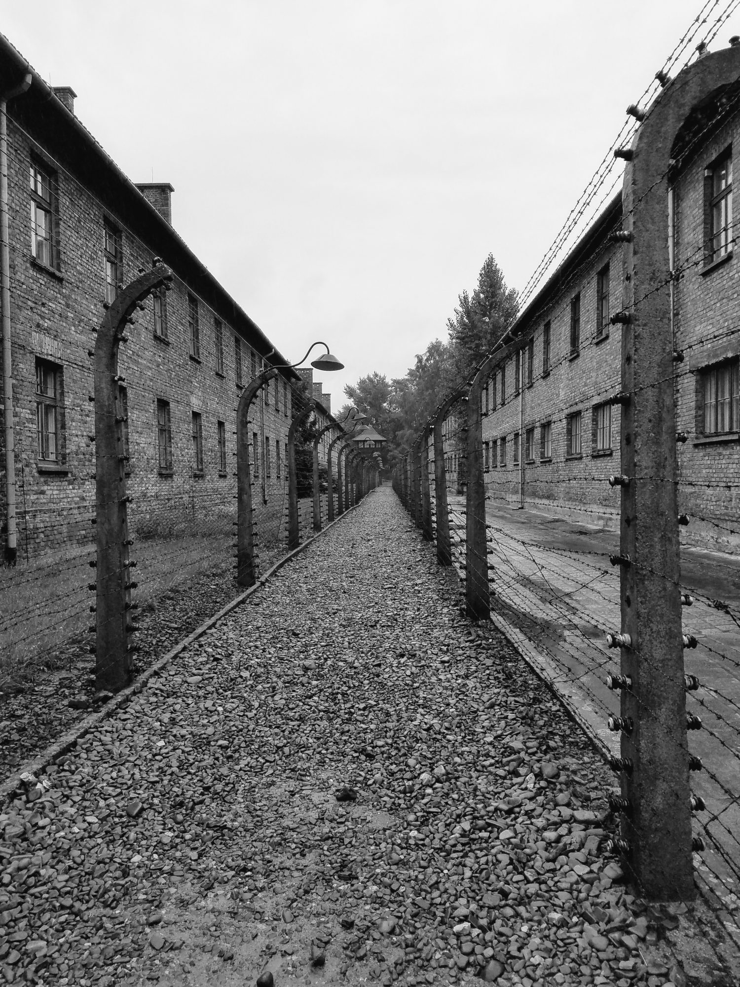barbed-wire-auschwitz