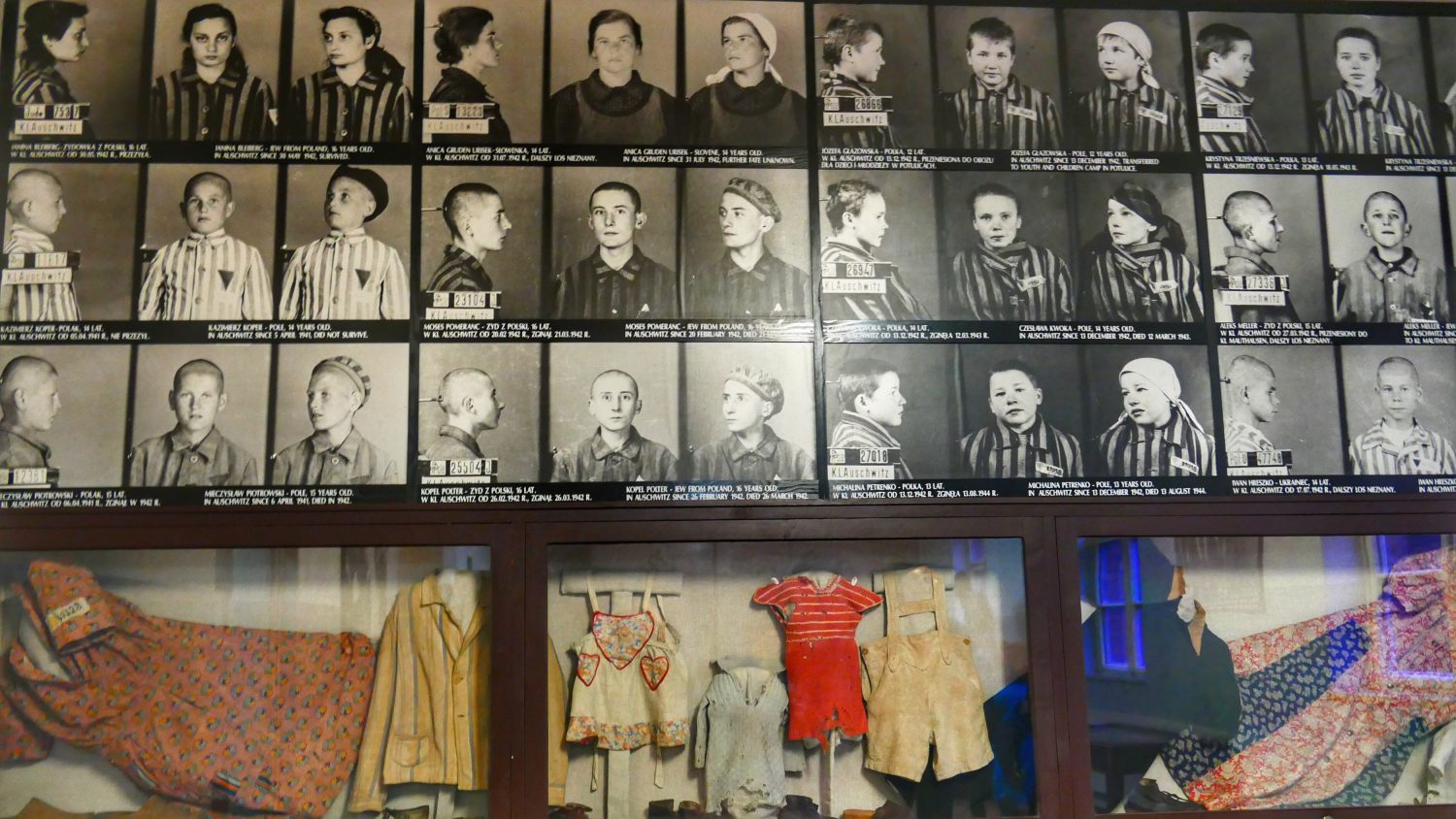 display-auschwitz